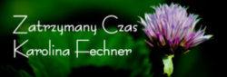 Zatrzymany Czas Karolina Fechner